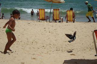 Recife 2010 janeiro 203