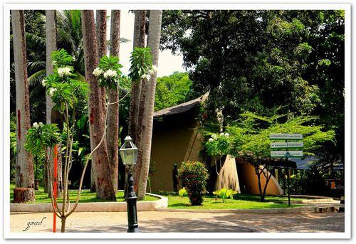 Bica_parque