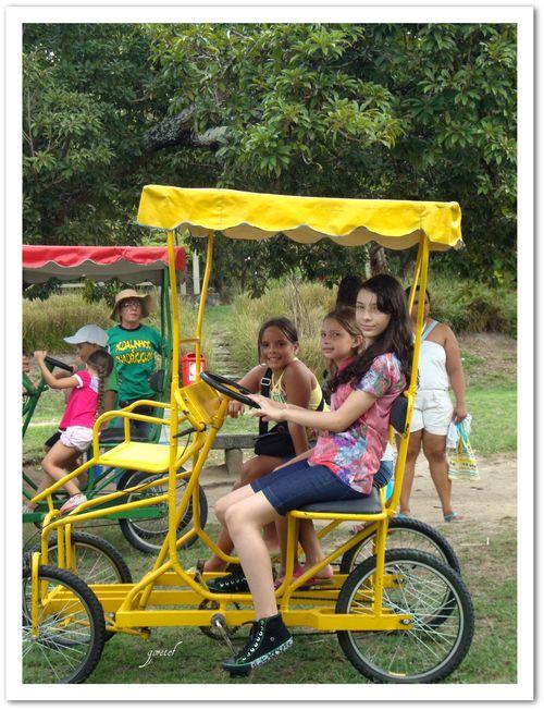 Bica_passeio1
