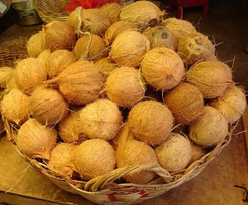 Cocos secos