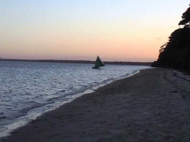 Ilha_da_restinga_010